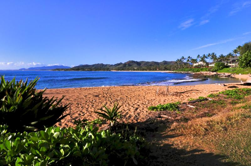 part of our beach where you can swim, snorkel, relax - Beachfront, steps to our beach, two bedrooms , one full bath, great for families - Kapaa - rentals