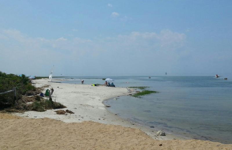 Beautiful, quiet Boat Meadow Beach - 1/3 mile from the house - Walk to Beach, Sunny Open Home, Marsh View & Birds - Eastham - rentals