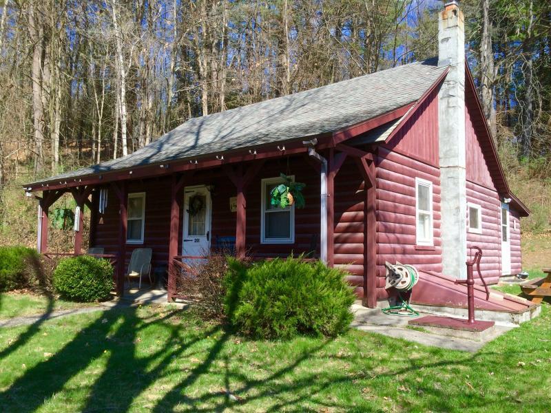 Lake George Area House - Image 1 - Lake George - rentals