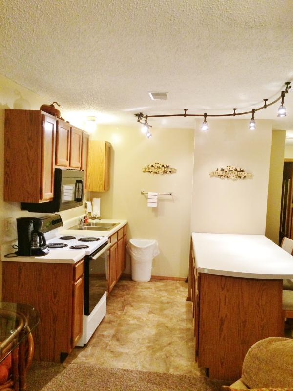 Beautiful 1 bdrm, 1 bath condo in Branson - Image 1 - Reeds Spring - rentals