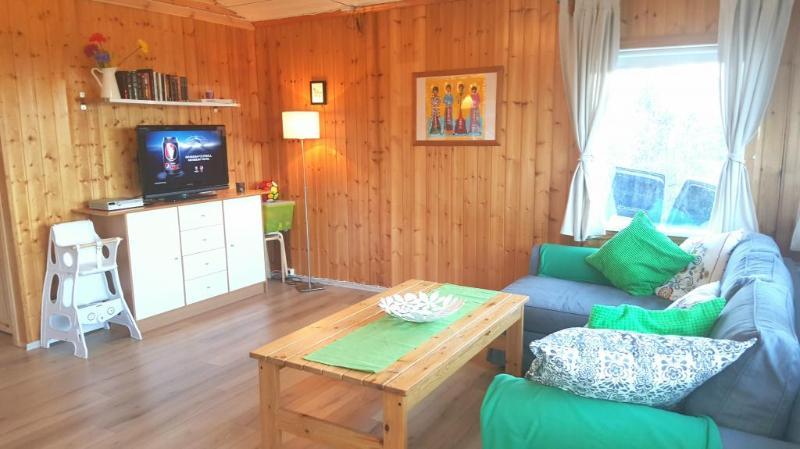 Golden circle - Summerhouse Laugarvatn, - Image 1 - Laugarvatn - rentals