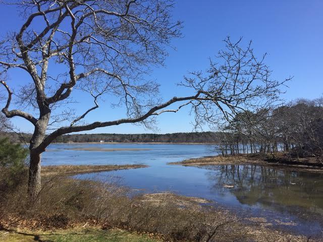 Private Home with Views of the Marsh! - Image 1 - South Wellfleet - rentals