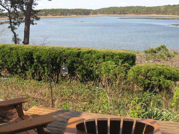 Lovely Condo Overlooking Drummer Cove - Image 1 - Wellfleet - rentals