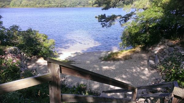 Pretty 3 Bdrm with Access to 2 Brewster Ponds - Image 1 - Brewster - rentals