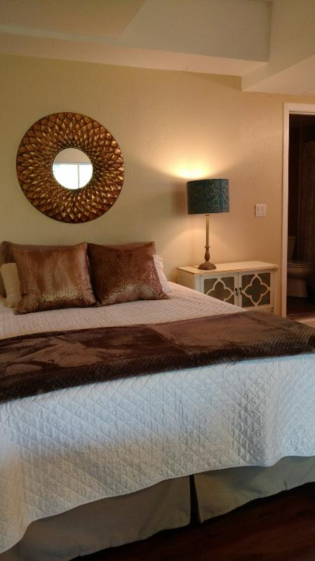 STUNNING AND FURNISHED STUDIO APARTMENT - Image 1 - Pacheco - rentals