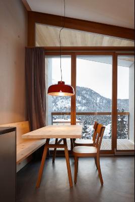 Alpine Lodge Seglias 1B – Pontresina - Image 1 - Pontresina - rentals