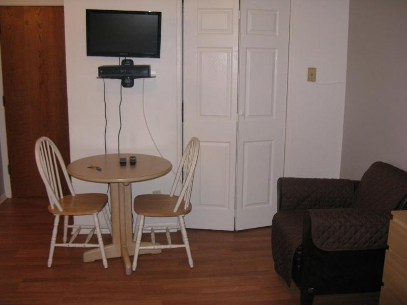 Fully Furnished Studio Apartment in Chicago - With Wireless Internet and Kitchen - Image 1 - Chicago - rentals