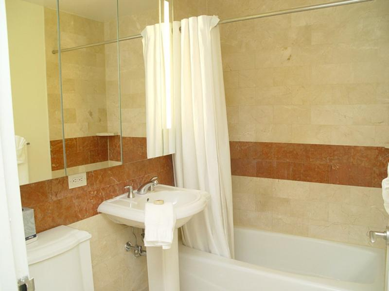 LUXURIOUS AND SPACIOUS 1 BEDROOM, 1 BATHROOM APARTMENT - Image 1 - New York City - rentals
