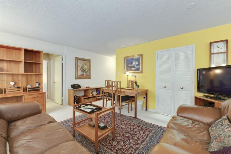 MODERN AND FURNISHED 1 BEDROOM APARTMENT - Image 1 - Rosslyn - rentals