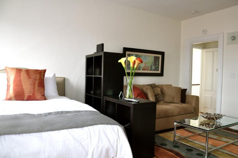 BEAUTIFULLY FURNISHED, CHARMING AND COMFORTABLE STUDIO APARTMENT - Image 1 - Boston - rentals