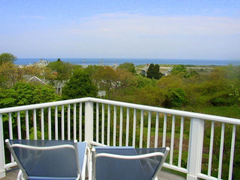 BERNJ - Menemsha Sea Coast Cottage, Gorgeous Waterviews, Walk to Menemsha Beach, WiFi - Image 1 - Chilmark - rentals