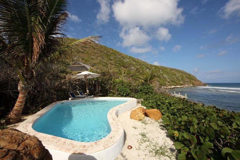 North Beach Villa - Image 1 - Guana Island - rentals