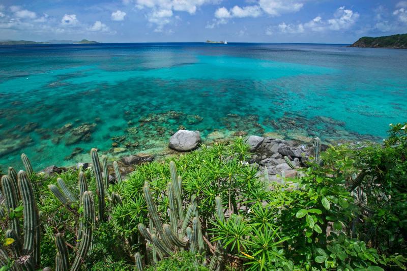 Seas' Song - Image 1 - Nail Bay - rentals