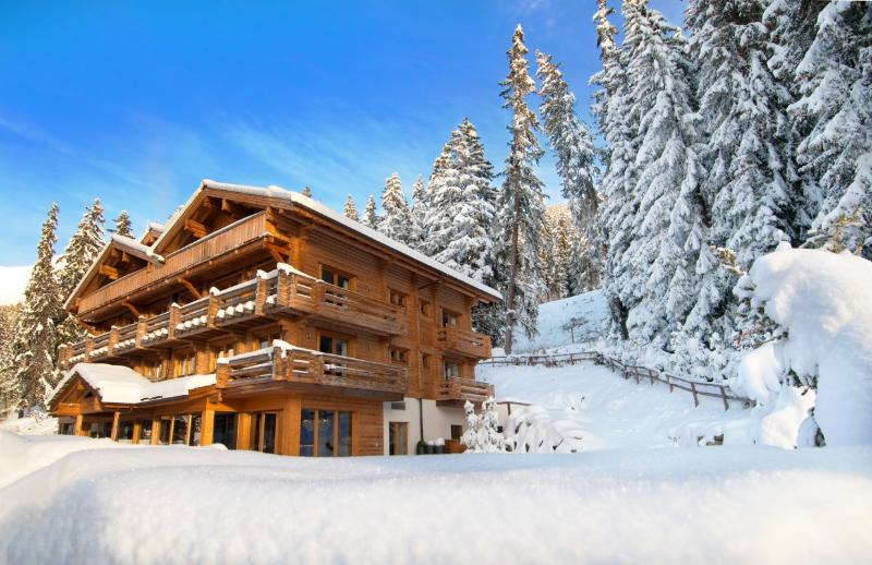 The Lodge - Image 1 - Verbier - rentals