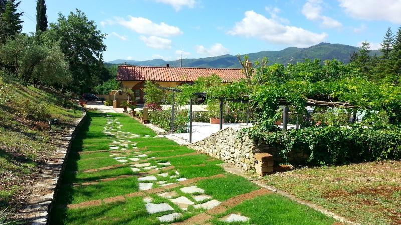Eos - Image 1 - San Donato In Collina - rentals