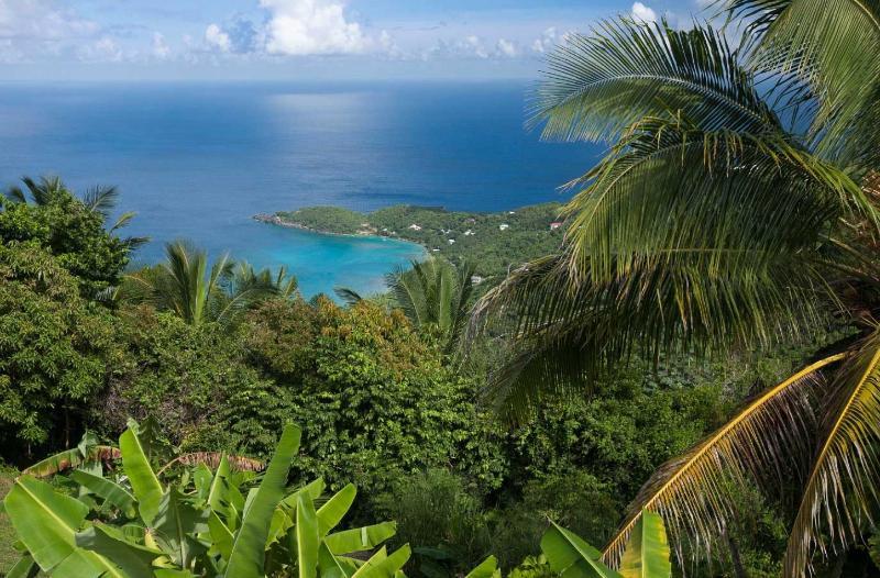 Diamond Crest - Image 1 - Tortola - rentals