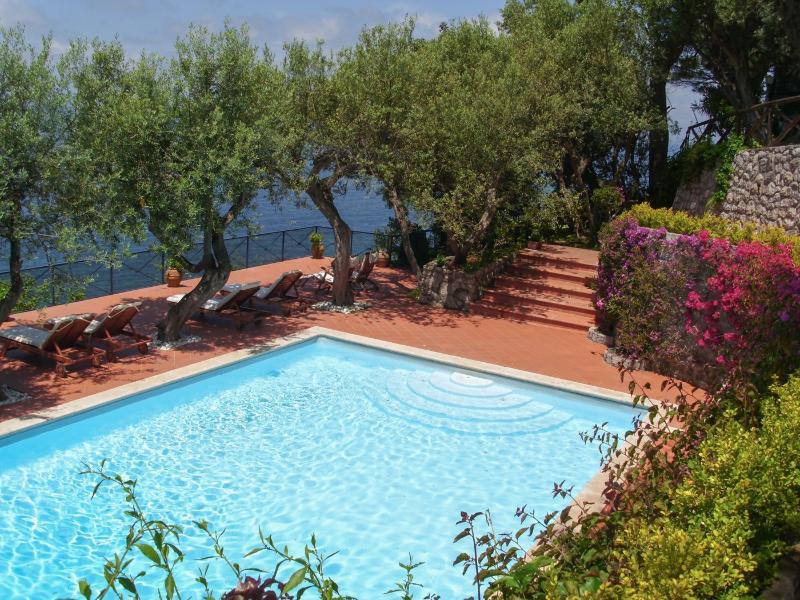 Azzurra - Amalfi Coast - Image 1 - Marciano - rentals