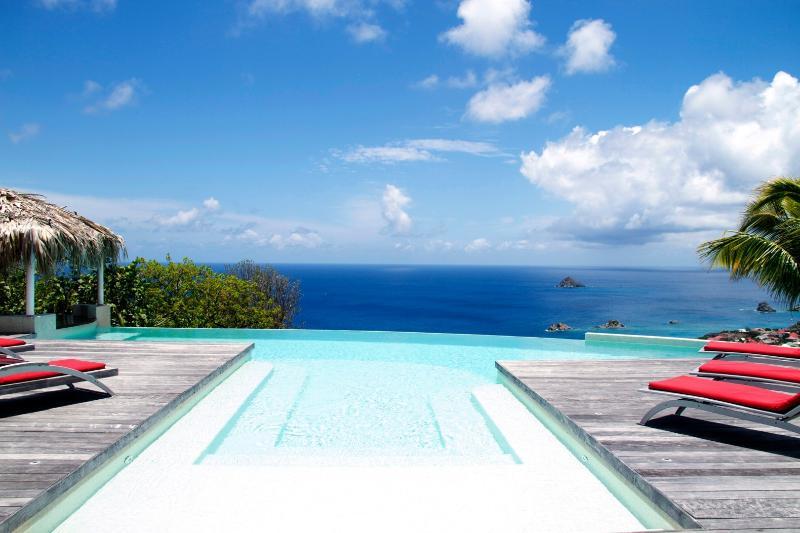 Blue Swan (SBN) - Image 1 - Gustavia - rentals