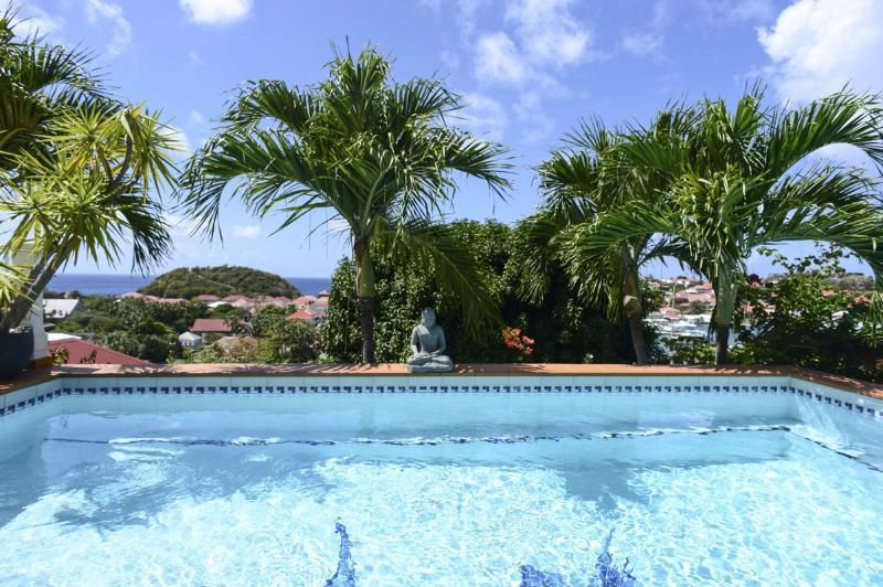 Le Marlin - Image 1 - Gustavia - rentals