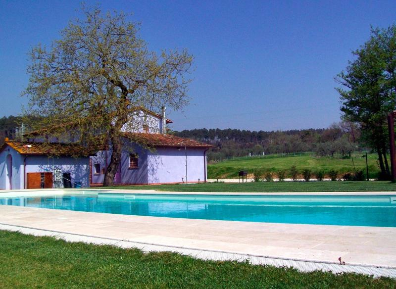 Palazzetto - Image 1 - Montecarlo - rentals
