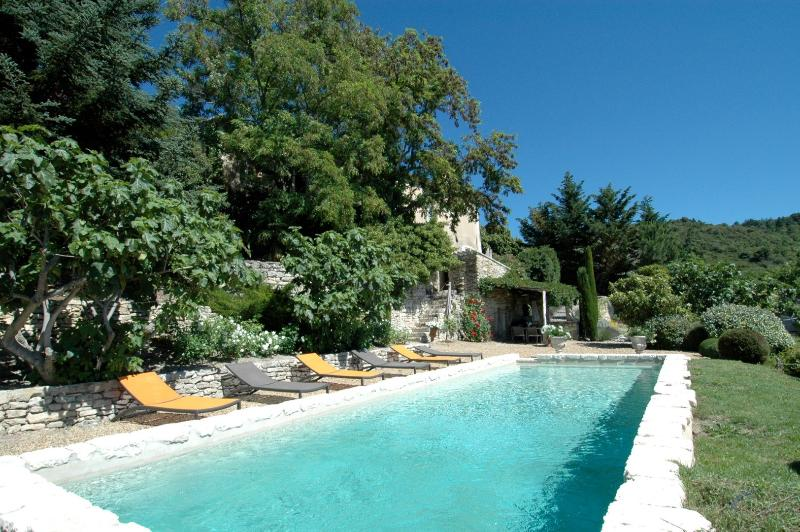 Elegance - Image 1 - Bonnieux en Provence - rentals