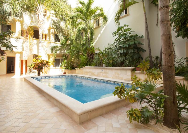Lovely pool area surrounded by tropical gardens. - 4 Bedroom Penthouse 1/2 block to Mamitas Beach and 5th ave! - Playa del Carmen - rentals