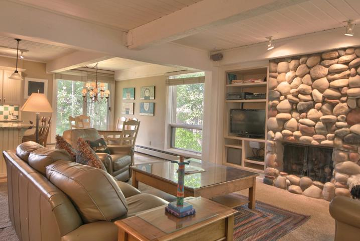 Living Area with Gas Fireplace - Ground Floor  Slope Side  Ski In, Ski Out Condo! - Snowmass Village - rentals