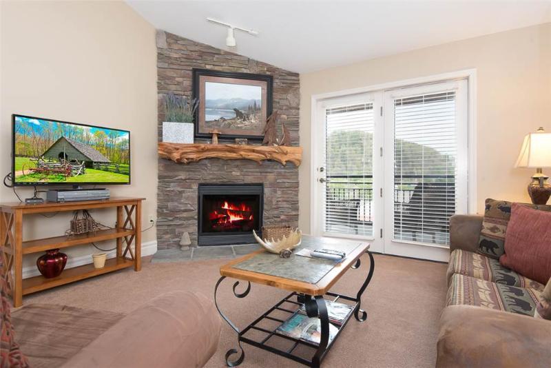 Baskins Creek 403 - Image 1 - Gatlinburg - rentals