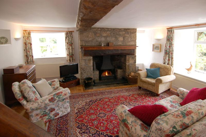 Thorn Cottage - Image 1 - Chagford - rentals
