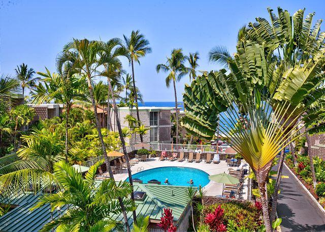 Complex Pool - Ocean Front Complex, Upgraded Condo, Free WIFI - Kailua-Kona - rentals