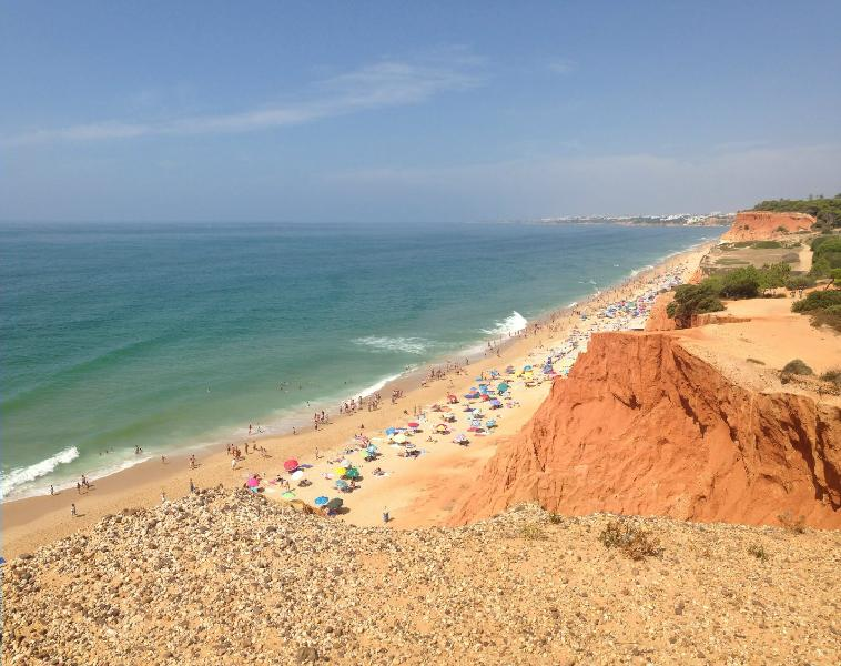 Nice Apartment 300 m from Falesia Beach - Image 1 - Albufeira - rentals