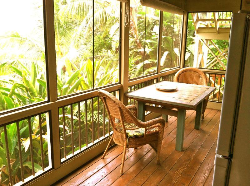 screened in porch - Kili Studio Maui - Haiku - rentals