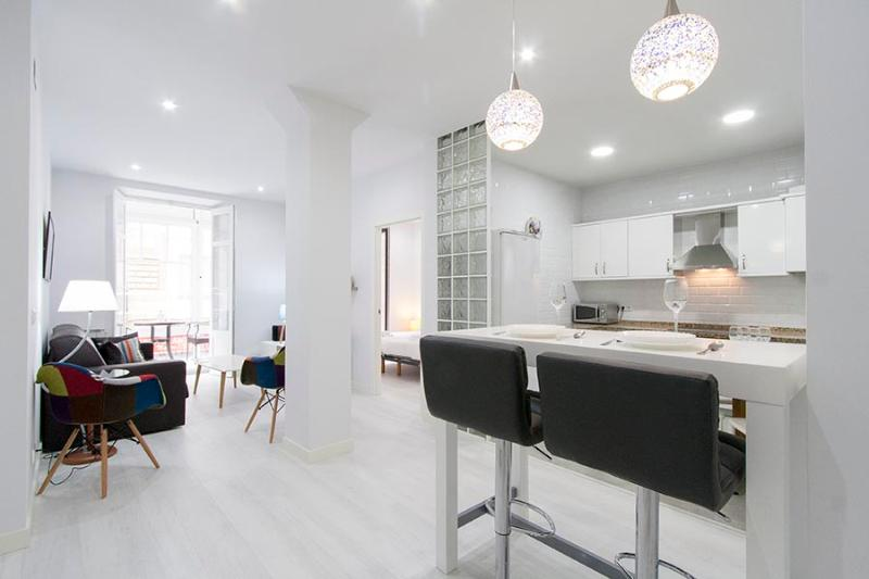 Open concept kitchen and living room - Larrea - San Sebastian - Donostia - rentals