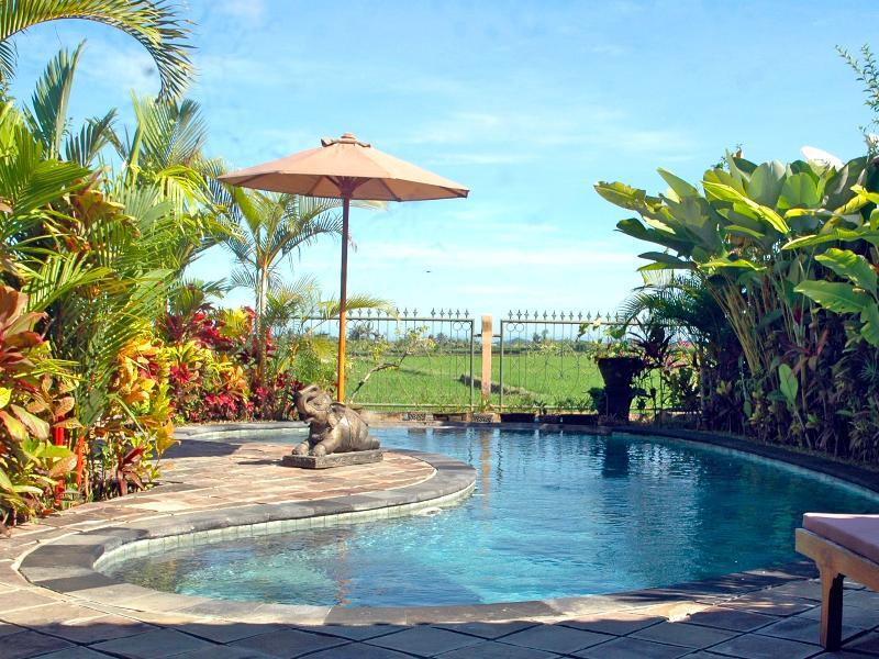 Salt-water Pool - Devi's Place Ubud- 2BR great views Orchid Bungalow - Ubud - rentals