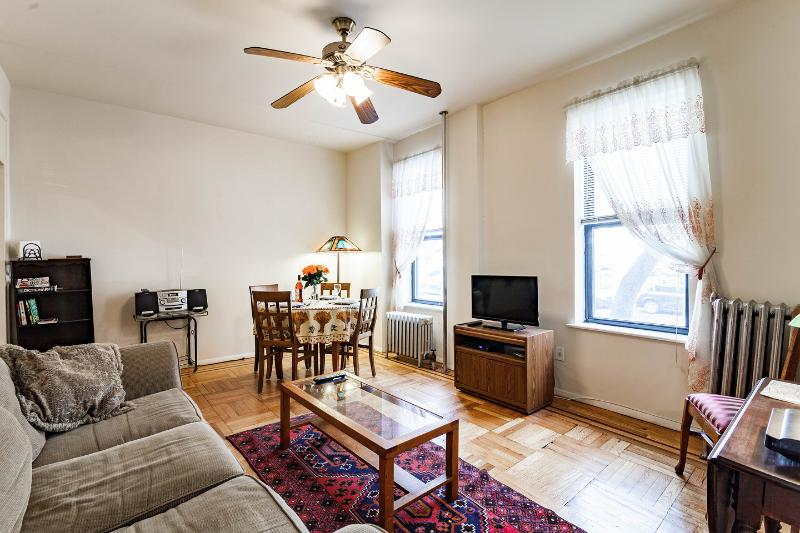 Living Room - Fully furnished 1BR in charming Brooklyn nabe - Brooklyn - rentals