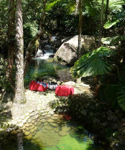 View from the verandah  overlooking your private natural swimming pool. Perfect place to relax. - Daintree Secrets Rainforest Sanctuary - Daintree - rentals