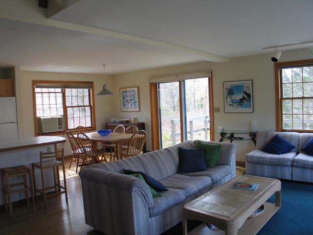 Charming West Tisbury Cape with pool (393) - Image 1 - Massachusetts - rentals