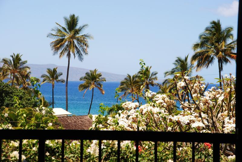 Spectacular Water View From Living Room - Wailea Ehaki 20F - 2min Walk to Beach, Ocean Views - Wailea - rentals