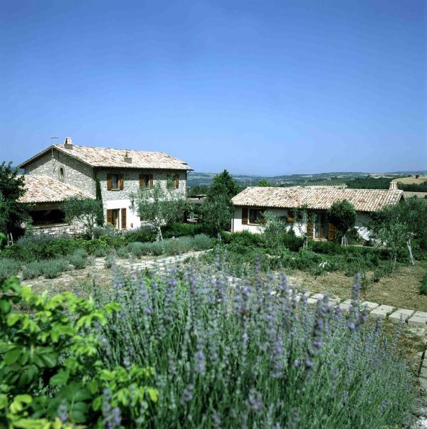 Villa Serenita Orvieto Villa rental - Umbria - Image 1 - Montecchio - rentals