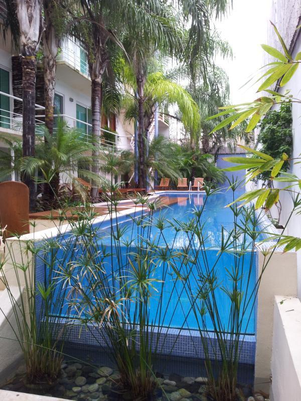 Papaya Stunning Multi level three bedroom PH - Image 1 - Playa del Carmen - rentals