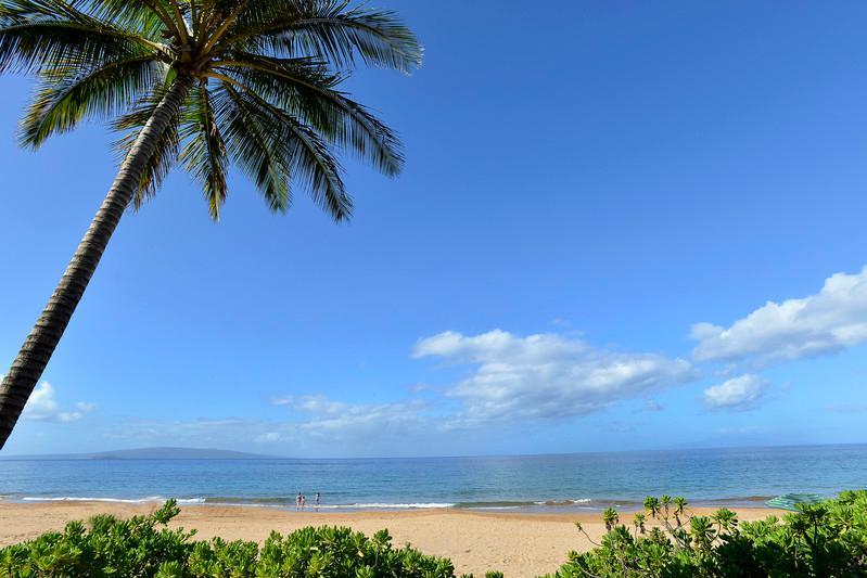 Wailea Sun & Sea Estate - Wailea Sun & Sea Estate - Kihei - rentals