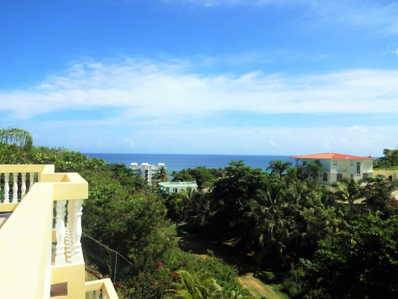 Villa 204 - walking distance to Sandy Beach - Image 1 - Rincon - rentals