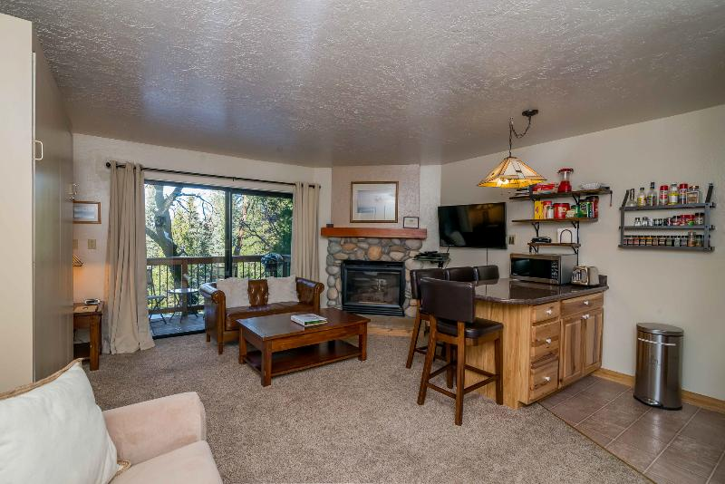 View of the condo w/ queen size Murphy bed, sofa sleeper, living & dining area, fireplace & balcony. - Cozy Studio Condo Inside the Gates of the Park! - Yosemite National Park - rentals