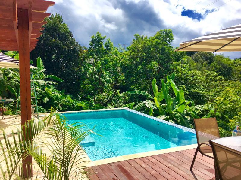Casa Valencia # 8 Pool, Wi-Fi & A/C - Image 1 - Rincon - rentals