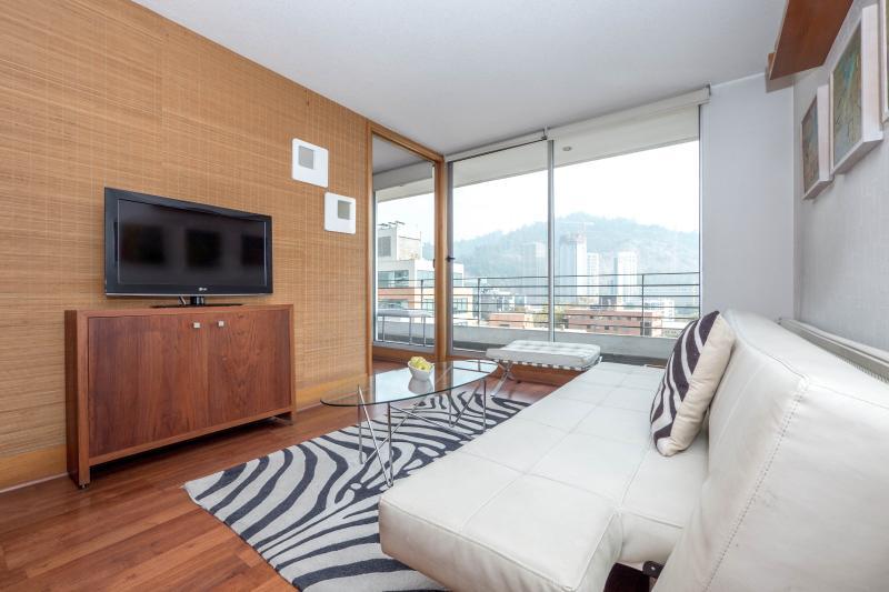 Cozy One Bedroom Apartment in Providencia - Image 1 - Santiago - rentals