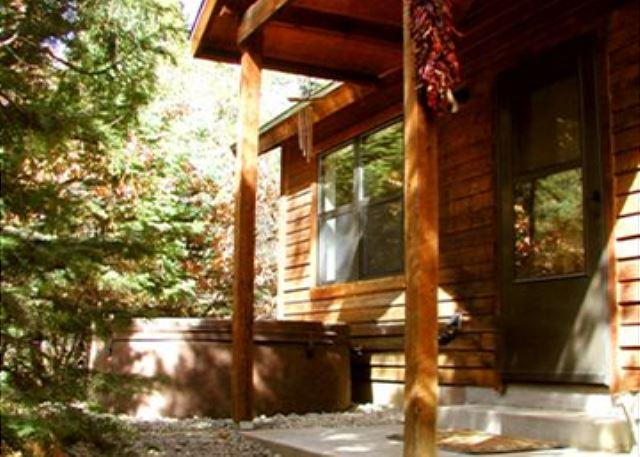 El Salto Private Cabin secluded setting  wi-fi hot tub remote - Image 1 - Arroyo Seco - rentals