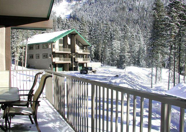 WHEELER PEAK 106 - Wheeler Peak 106 -Upscale  condo. Light and bright, 2/10 of a mile to lift - Taos Ski Valley - rentals