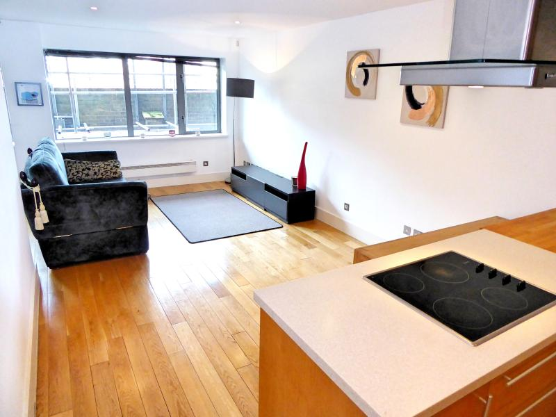 Living Room and Kitchen - London Bridge - London - rentals