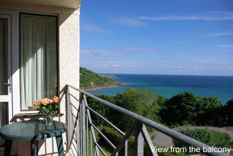 Godrevy View - Image 1 - Saint Ives - rentals