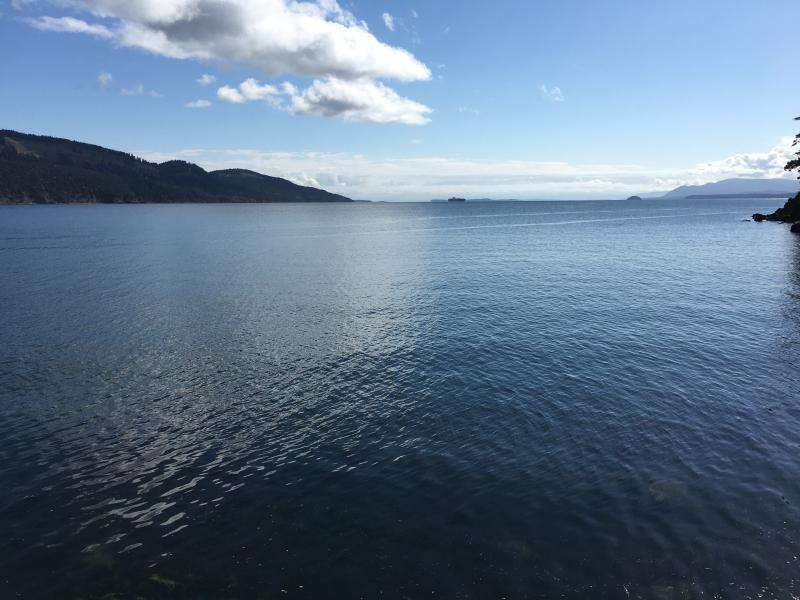 Front Facing towards Mount Baker - $1050-2 BR (Southern Gulf Islands) Pender Island - Pender Island - rentals